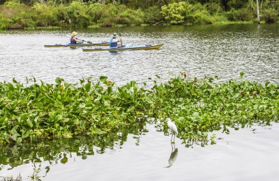 florida kayaking tours near orlando